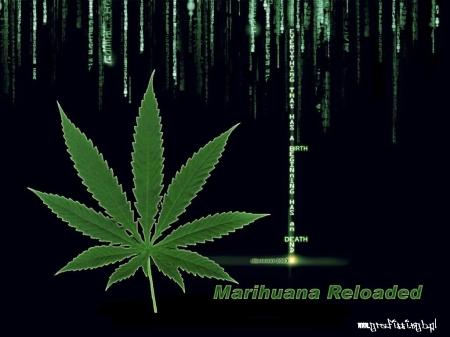 marihuana_02